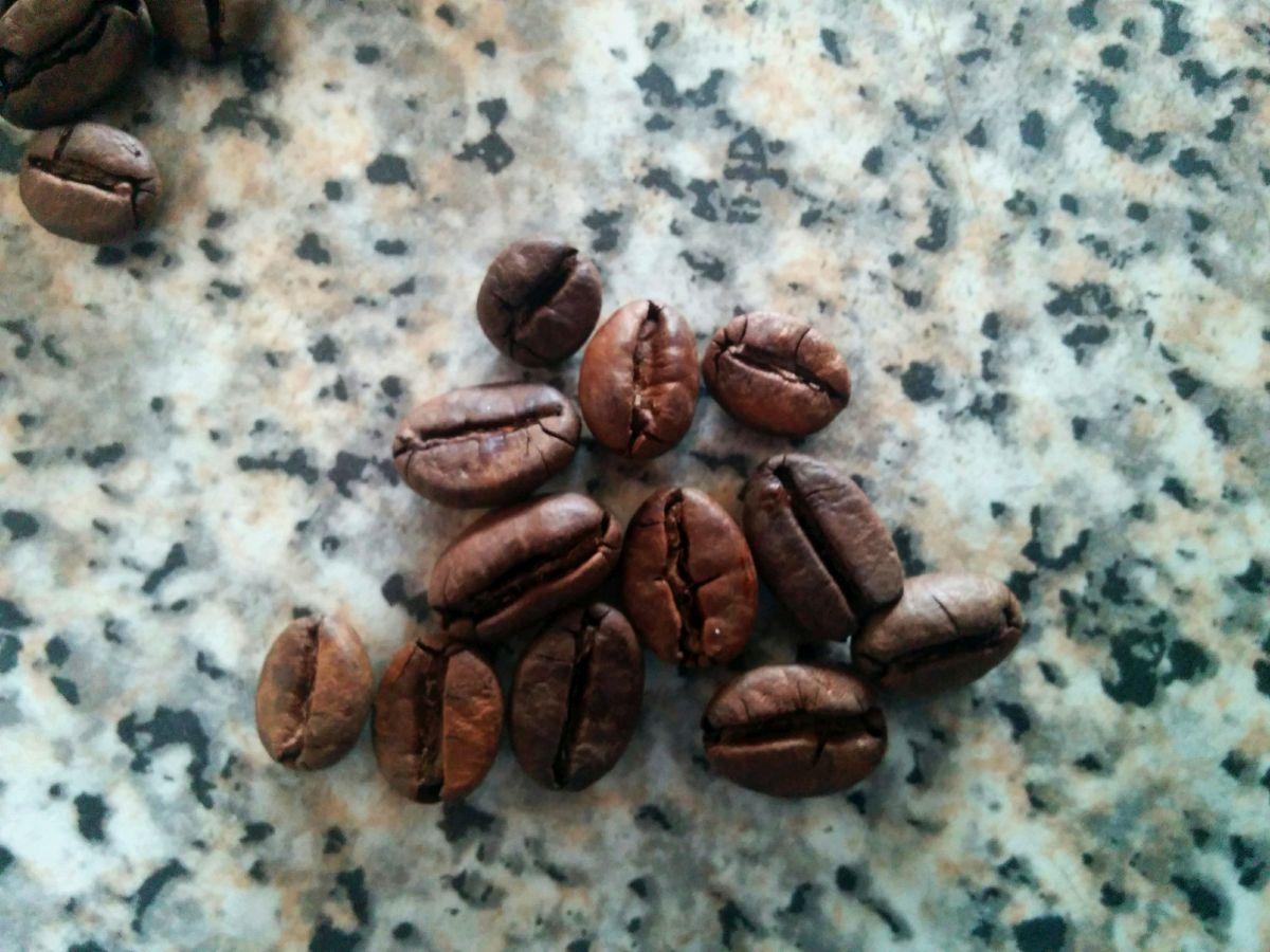 recensione del chicco di caffè verde dr ozelli